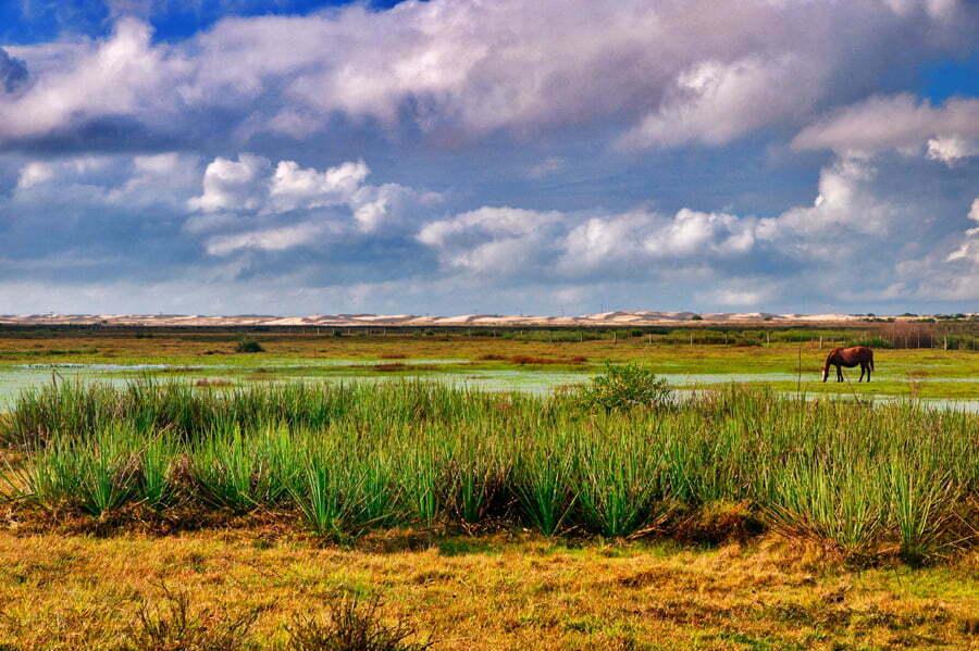 lagoa- e duna- Parque Nacional da Lagoa do Peixe.