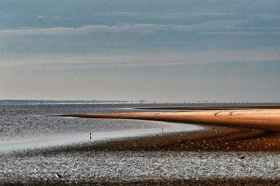 paisagem, Parque Nacional da Lagoa do Peixe.