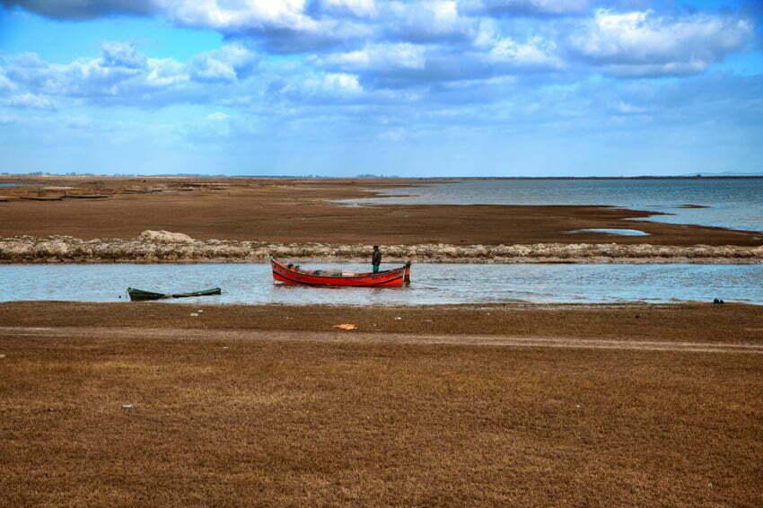 imagem de Caico Lagoa Mirim, na Estação Ecológica do Taim.