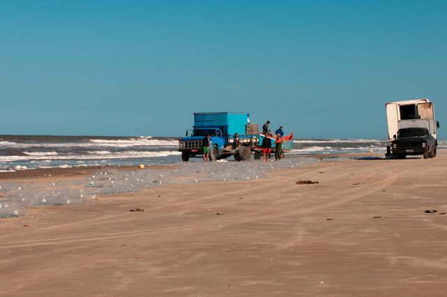 I caminhão e pescadores com rede, praia do Cassino, RS